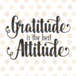 ¿Por qué ser agradecido en el trabajo es buen negocio también para ti?.