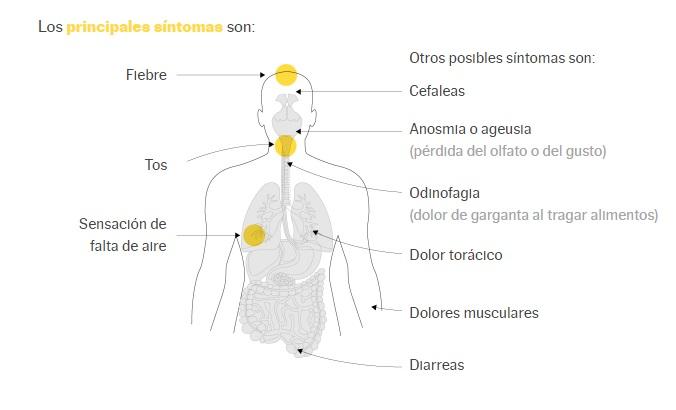 cuadro clinico de infeccion